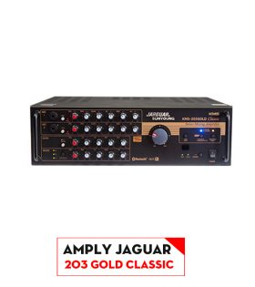 amply 203Gold CLASSIC